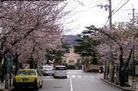 バス道近景OK.JPG