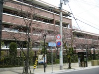 学園花通り.JPG