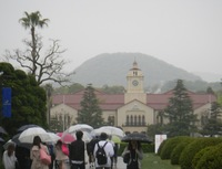 雨のKG2016.4.21..JPG